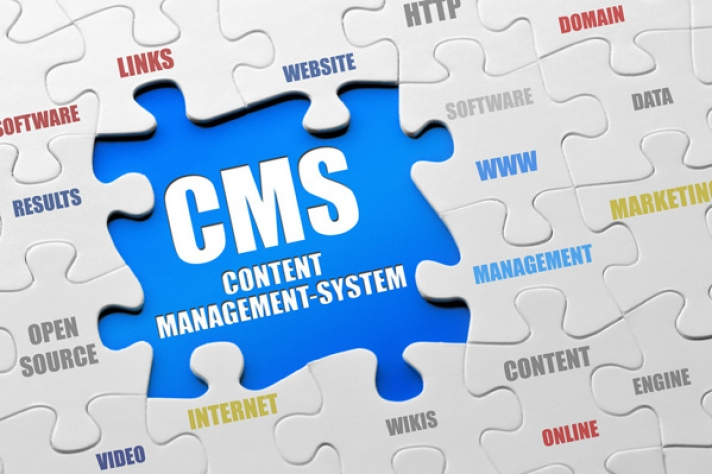 Powerful self-managed websites(CMS)